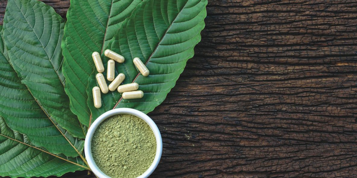 Crushed Kratom powder in a cup on top of kratom leaves and pills